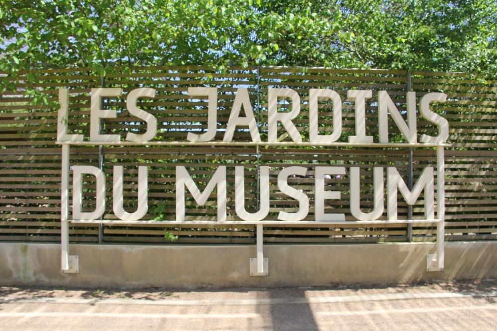 Les jardins du mus um toulouse mademoizel d - Les jardins du museum toulouse ...